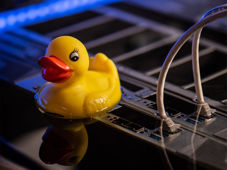Immersion Cooling Meets Rubber Duck